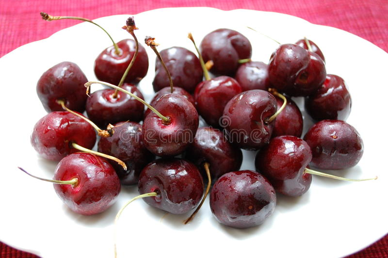 Download Chilled Cherries stock photo. Image of cherry, cold, stems - 20437612