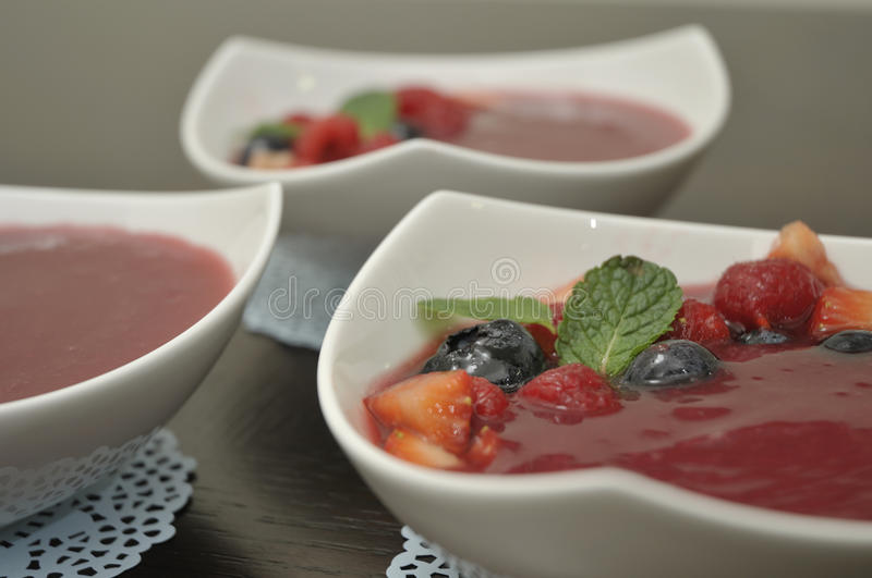 Chilled Fruit Soup Dessert royalty free stock photo
