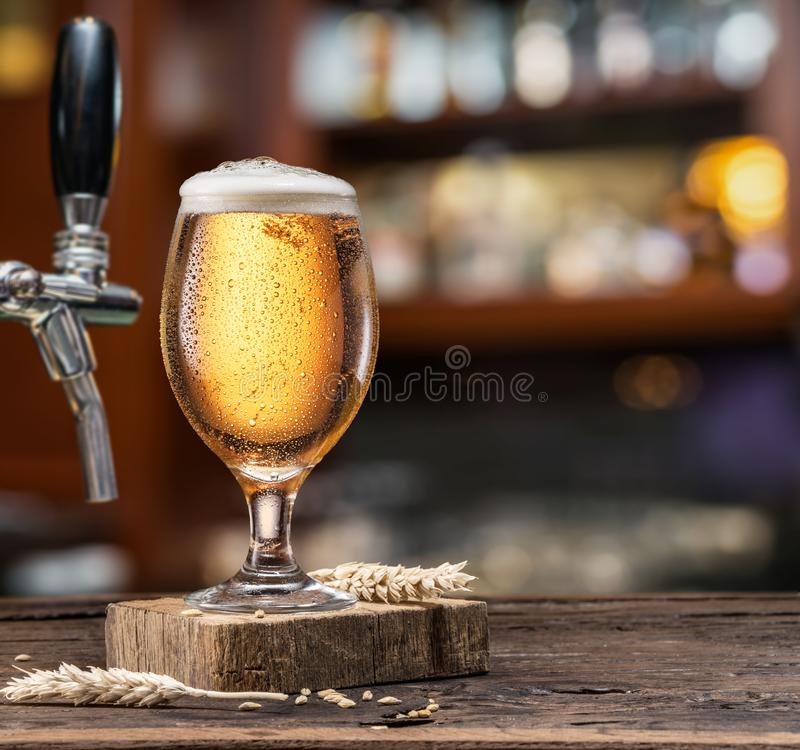 Chilled glass of light beer on the bar counter.  stock photo