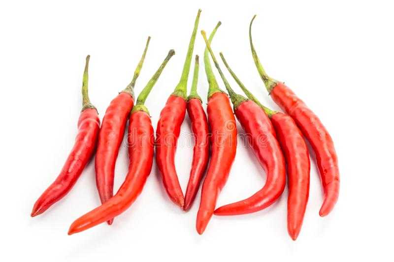 Chilli pepper with green tails set of spicy vegetable spices red pods on white background isolated royalty free stock photo