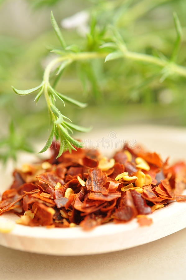 Chilli Pepper and Savory stock image