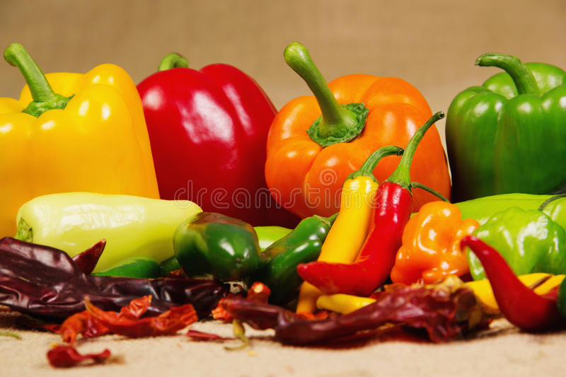 Chilli pepper still life. Stock image of chilli pepper still life, very colorful and varied stock photography