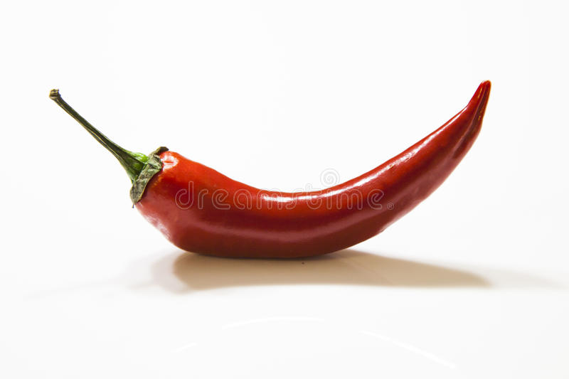 Chilli pepper. Very hot red chilli pepperr stock image