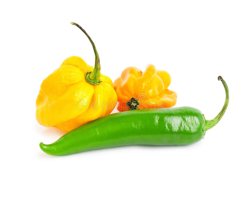 Download Chilli peppers stock photo. Image of cayenne, green, isolated - 19923132