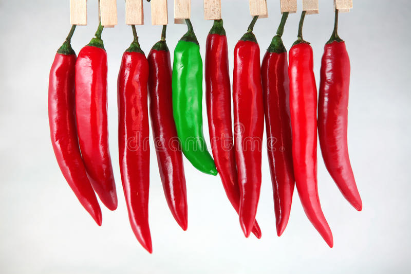 Chilli peppers. A green chilli pepper among the red ones