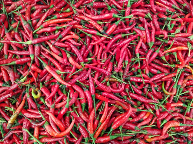 Red chilli pepper in market  for background royalty free stock photos