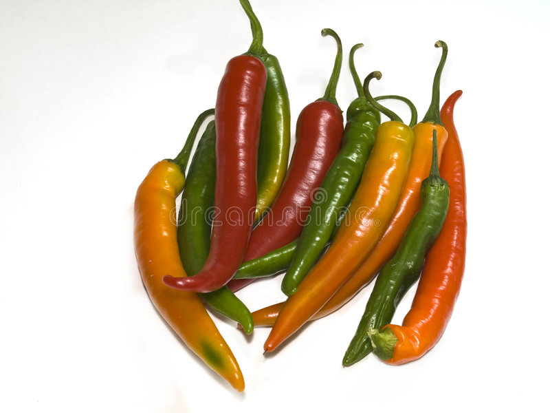 Chillies royalty free stock photography