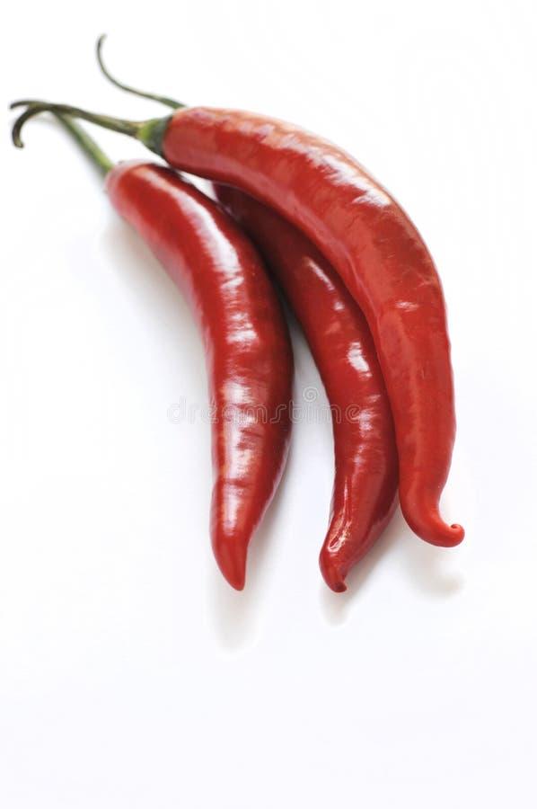 chillies czerwoni fotografia stock