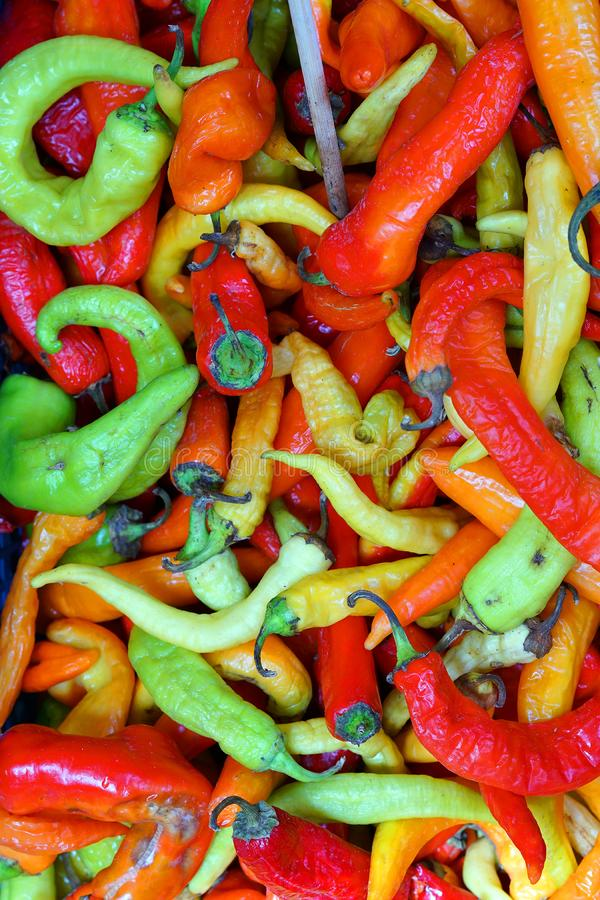Chillies of various colors at the market. Close-up royalty free stock photography