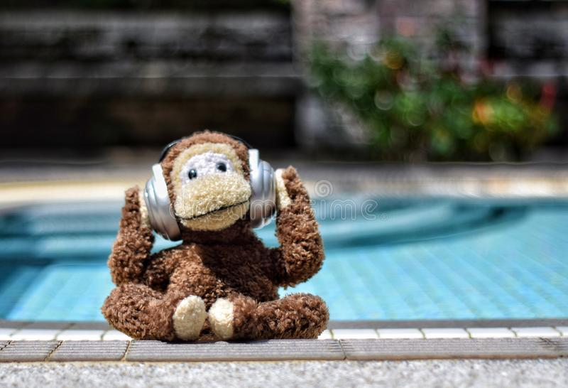 Chilling by the pool. Image of soft toy monkey with headphones on cling out by swimming pool in the sun royalty free stock photo