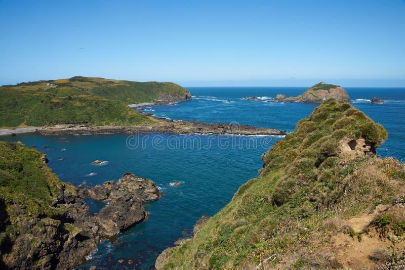 Chiloé海岸线 库存图片