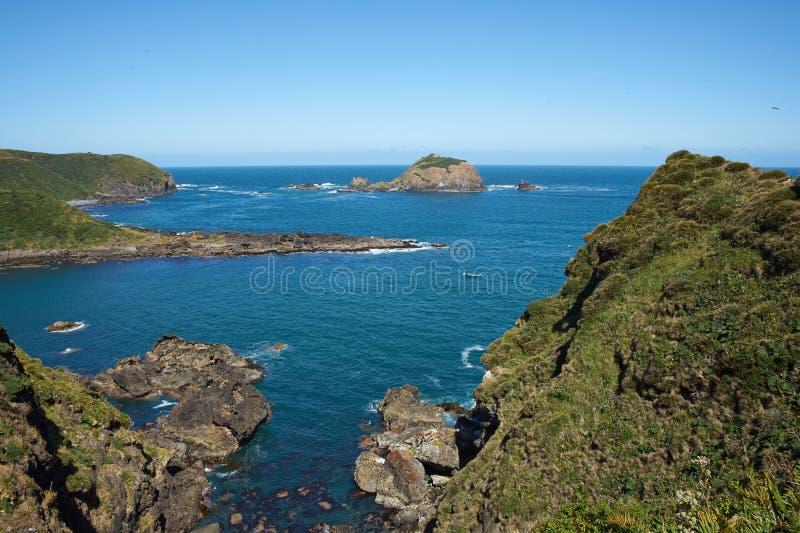 Chiloé海岸线 图库摄影