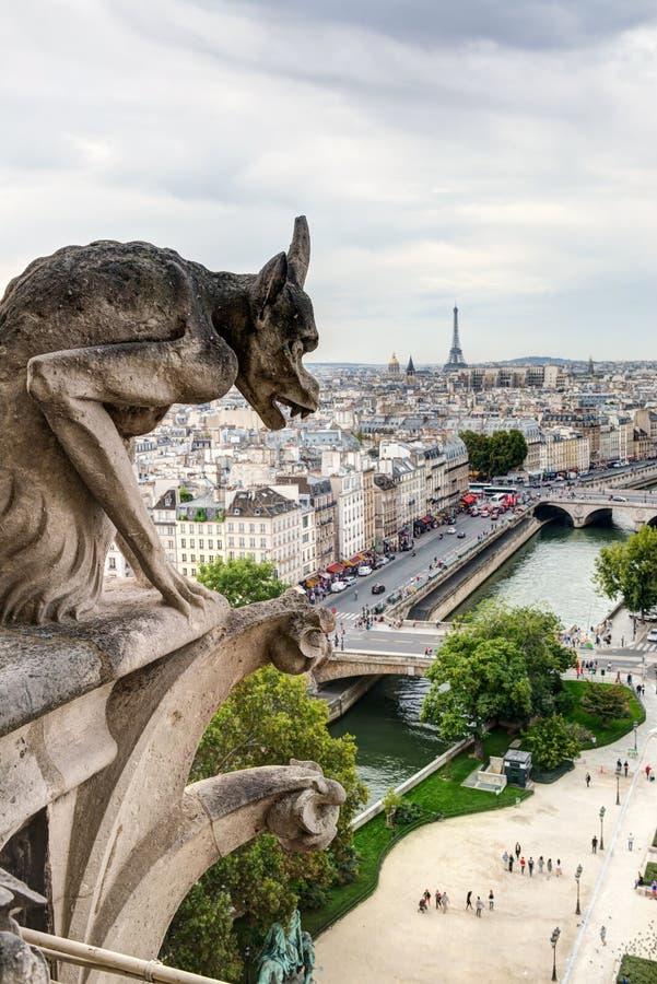Chimère (gargouille) de la cathédrale de Notre Dame de Paris  photographie stock libre de droits