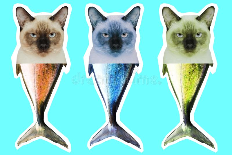 Chimère thaïlandaise de queue de tête et de poissons de chat Collage d'art contemporain images libres de droits