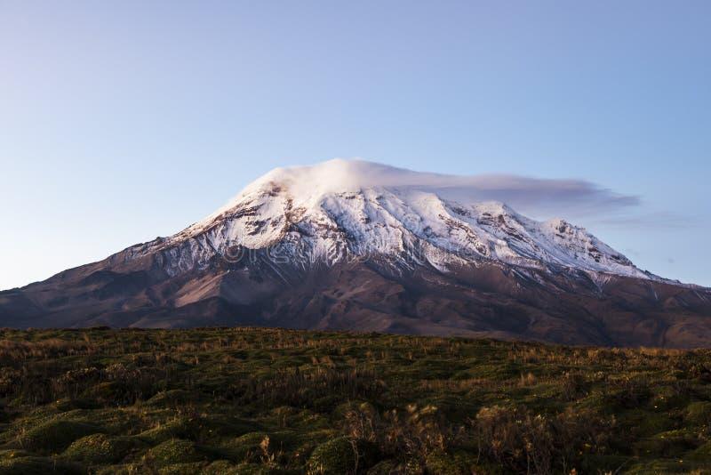 Chimborazo, στο σούρουπο στοκ εικόνες