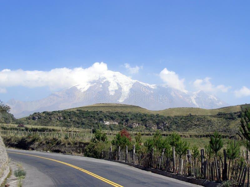 chimborazo volcan的厄瓜多尔 库存照片