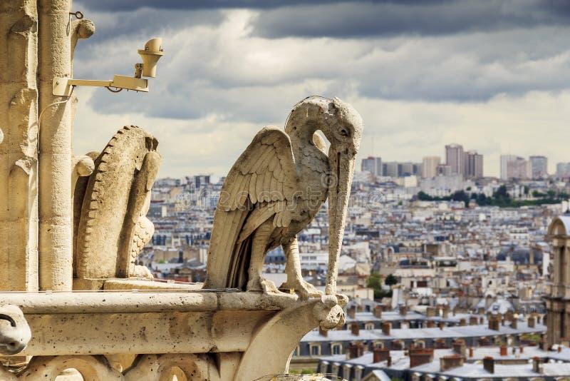 Chimera of Notre Dame de Paris royalty free stock photo