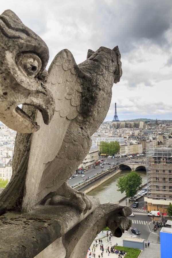 Chimera of Notre Dame de Paris royalty free stock images