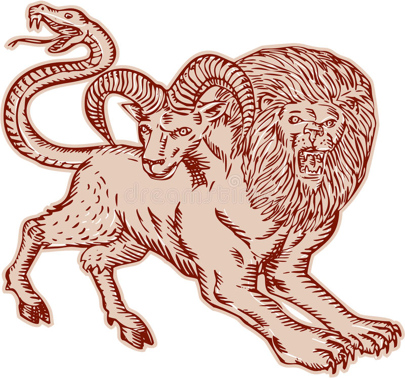 Chimera Pouncing Etching. Etching engraving handmade style Illustration of a Chimera, Greek mythical creature with head of a lion and goat and tail that ended in royalty free illustration