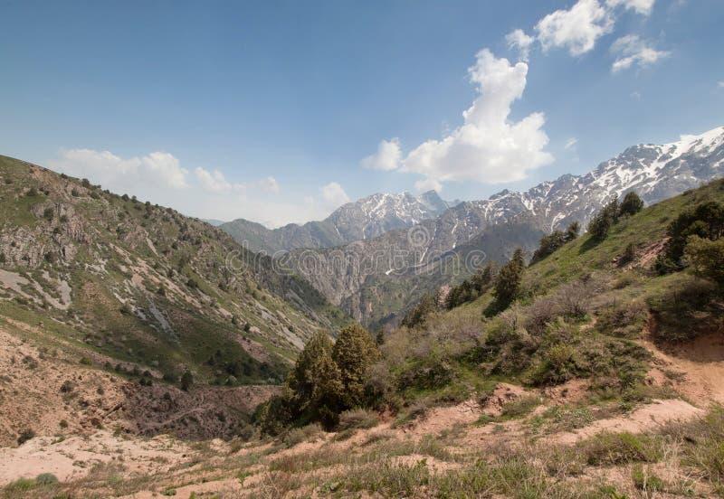 Chimganbergen, Oezbekistan royalty-vrije stock foto