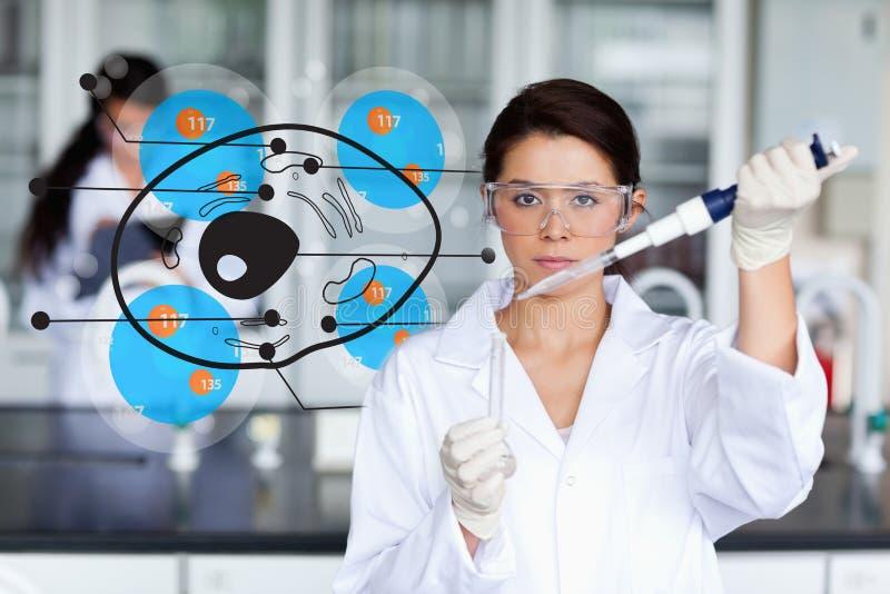 Chimiste sérieux travaillant avec l'interface de cellules images stock