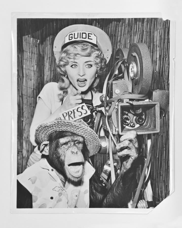 Chimpanzé com atriz - A cerca da fotografia 1940 do vintage com câmera de filme e do projetor que actua como o agente do guia tur imagem de stock royalty free