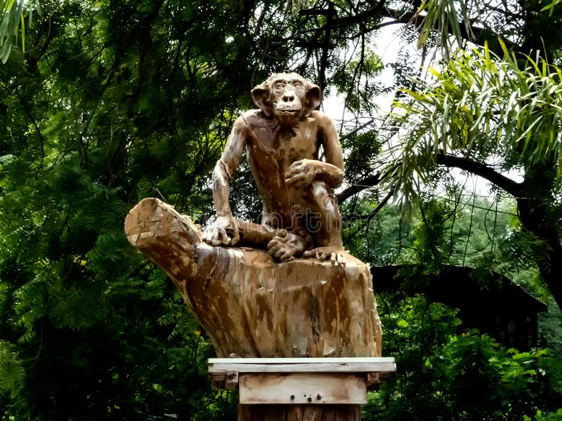 Chimpanzee, Monkey or Ape Sculpture-India. Chimpanzee, Monkey or Ape SculptureIdol made in Wooden Texture. Placed outside a Indore Zoo in India stock photos