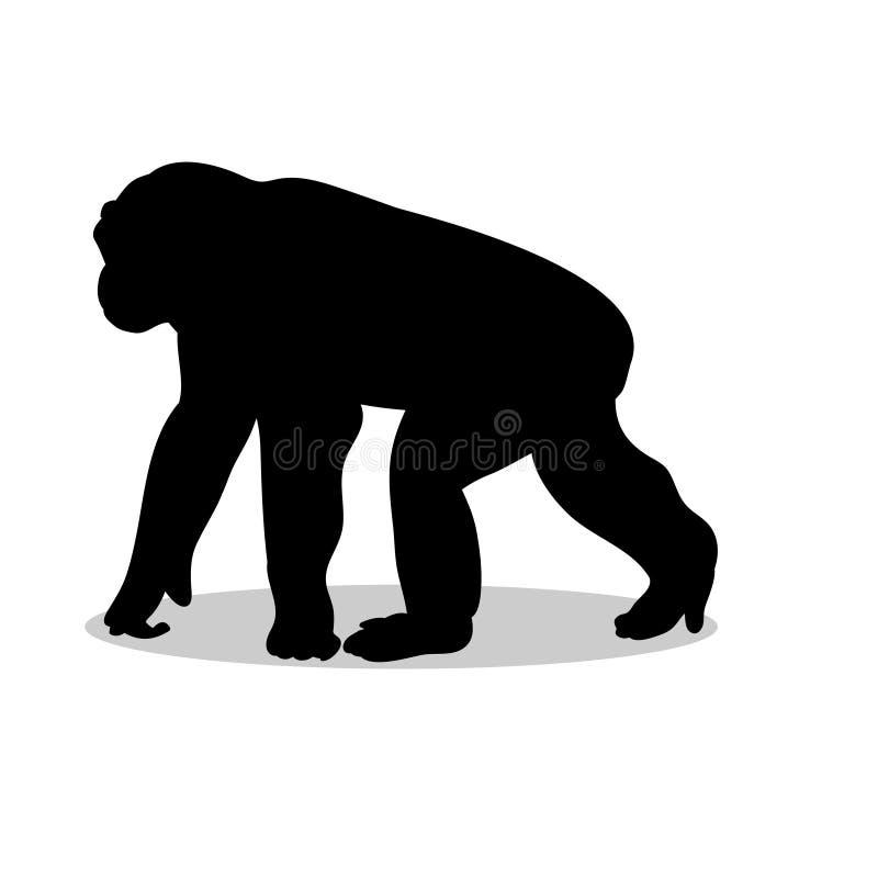 Chimpanzee monkey primate black silhouette animal vector illustration
