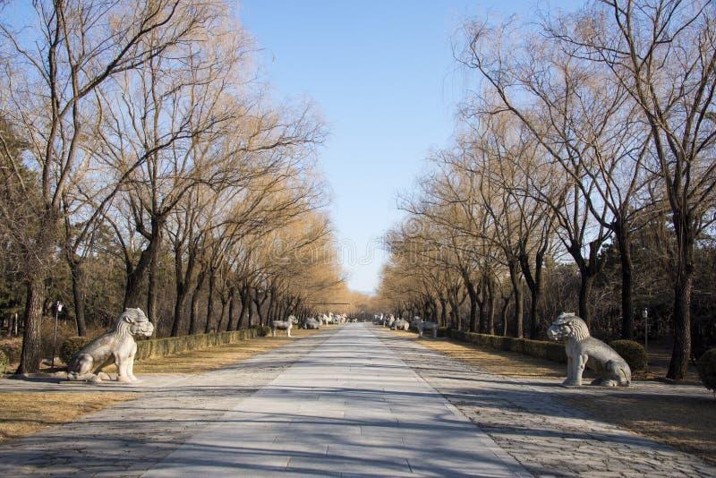 Chinês de Ásia, Pequim, Ming Dynasty Tombs, estrada do deus, paisagem adiantada da mola fotografia de stock