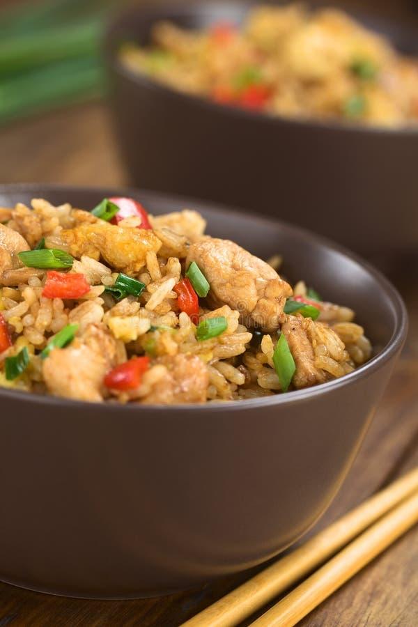 Chinês Fried Rice imagens de stock