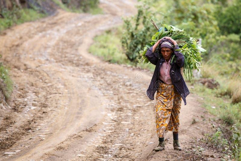 Download Chin State, Myanmar image stock éditorial. Image du saleté - 56476599