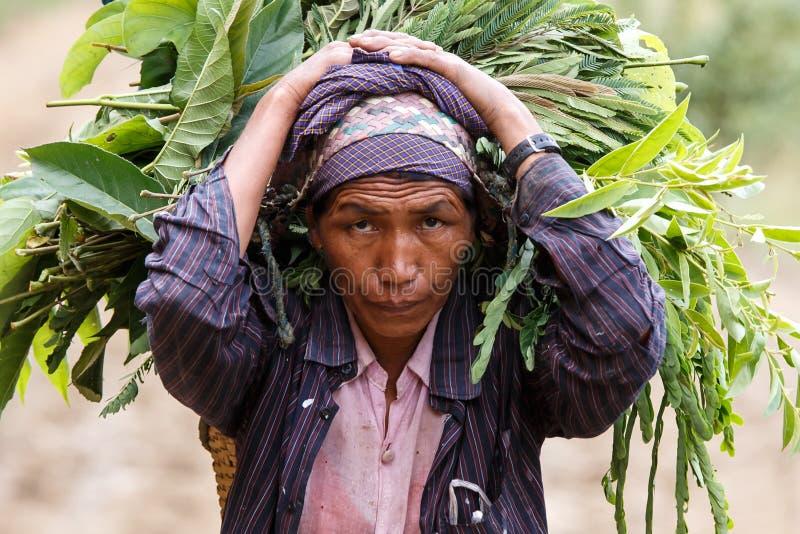 Download Chin State, Myanmar photo éditorial. Image du ferme, myanmar - 56476621