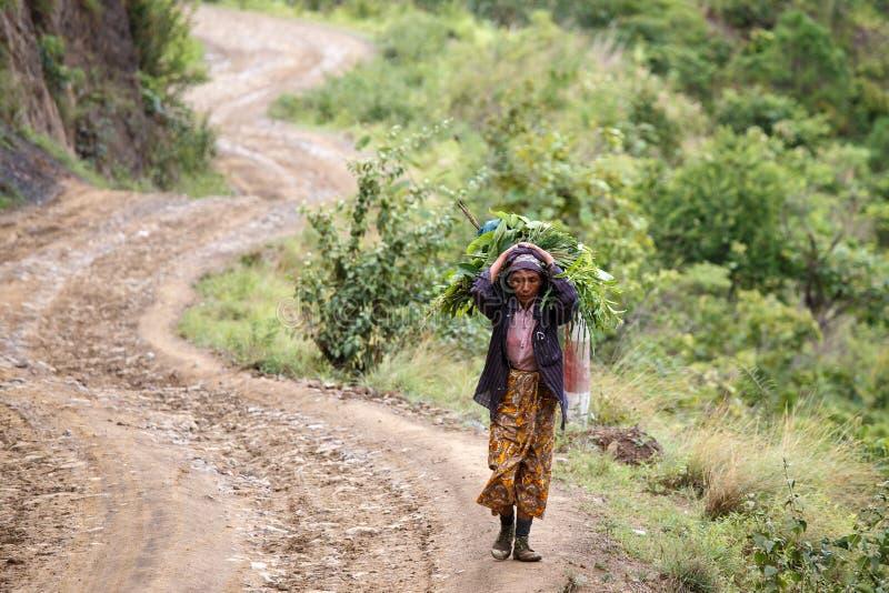 Download Chin State, Myanmar photo éditorial. Image du asiatique - 56476676
