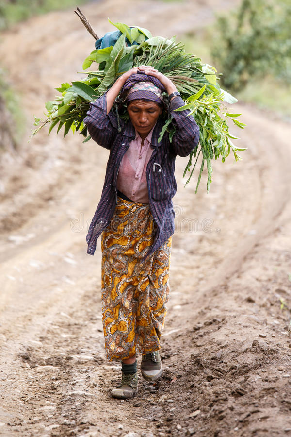 Download Chin State, Myanmar photographie éditorial. Image du paysan - 56476832
