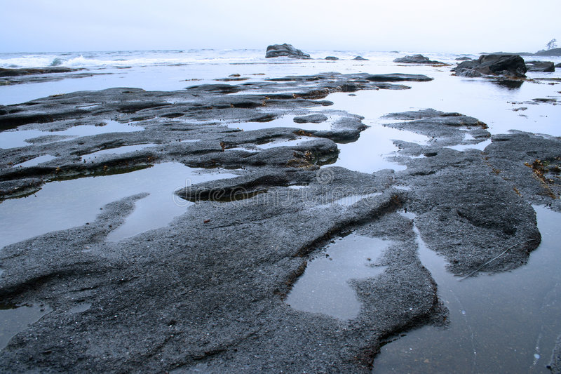 China Beach, Vancouver Island royalty free stock image