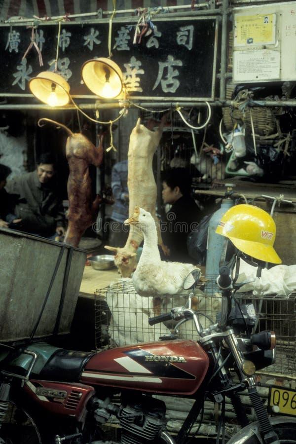 CHINA CANTON MERCADO ANIMAL DE GUANGZHOU imagen de archivo