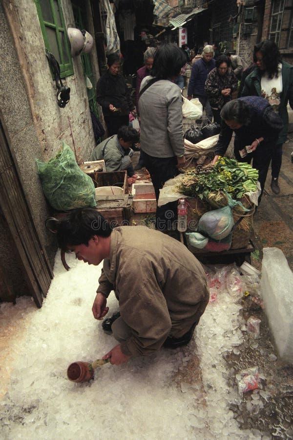 CHINA CANTON MERCADO ANIMAL DE GUANGZHOU imagen de archivo libre de regalías