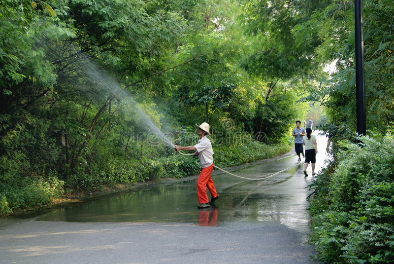 China de Shenzhen: trabajadores en el riego de los árboles imágenes de archivo libres de regalías
