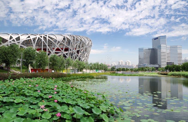 China National Olympic Stadium stock photo