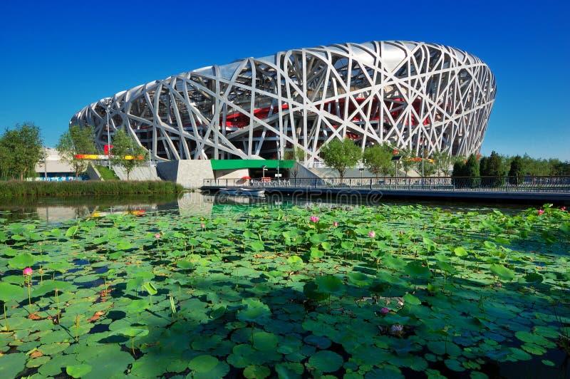 China National Stadium in Beijing royalty free stock photo