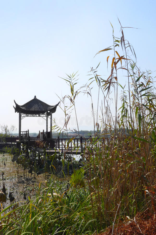 China national wetland reserve park stock photo