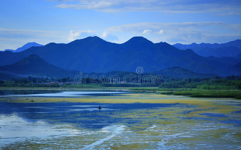 China Qinghai Lake scenery royalty free stock photos