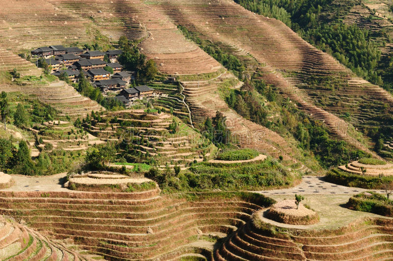 China - rice terraces royalty free stock images