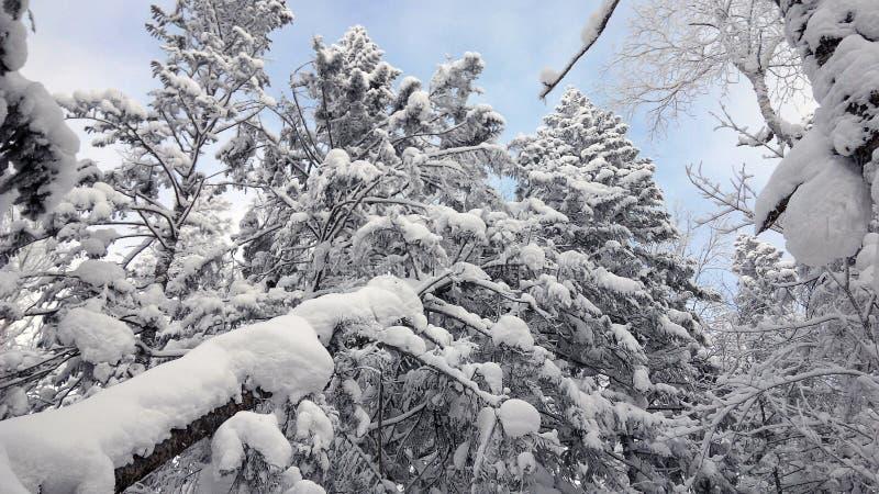 China-Schnee-Stadt lizenzfreie stockfotografie