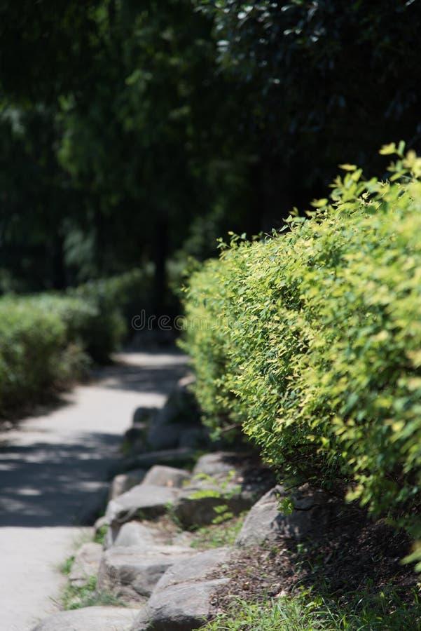 China soleada del verano del camino hermoso de la roca foto de archivo libre de regalías