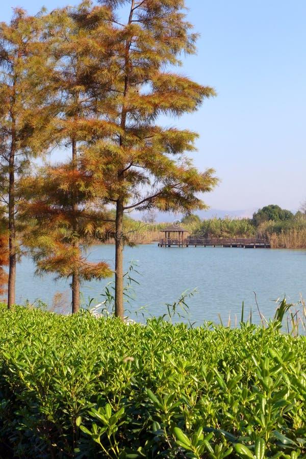 China Tai虎队著名风景湖 图库摄影