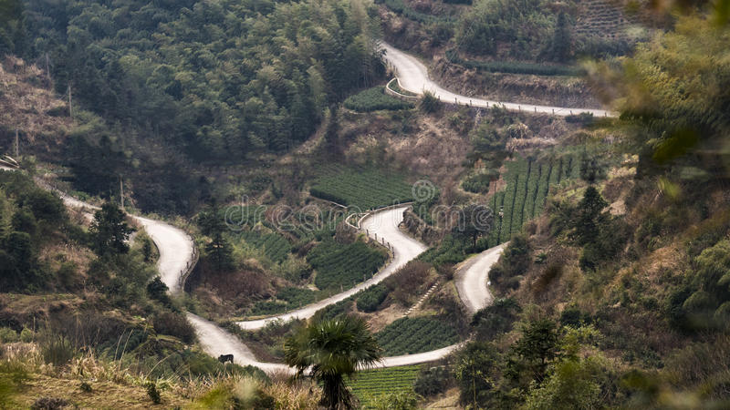China Zhejiang Rural Road. Photo taken on: January, 2017 royalty free stock photography
