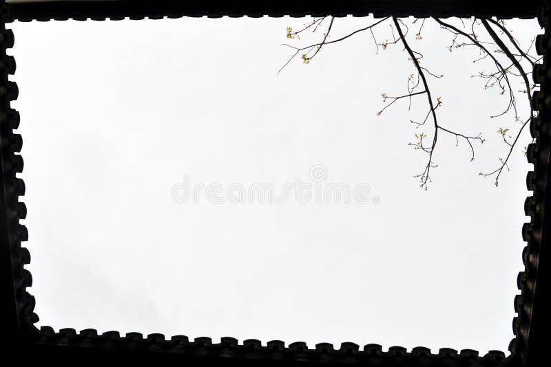 China zhejiang wuzhen binnenplaatsterras stock foto