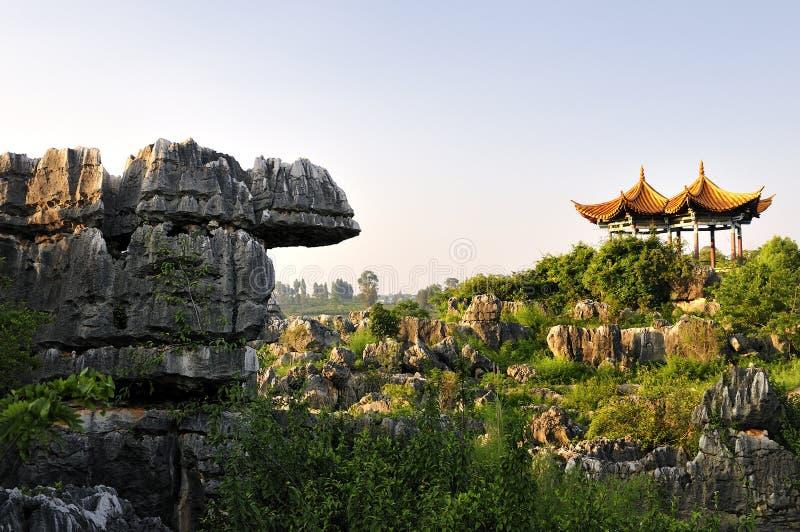 Chinas Stein-Wald lizenzfreie stockfotos