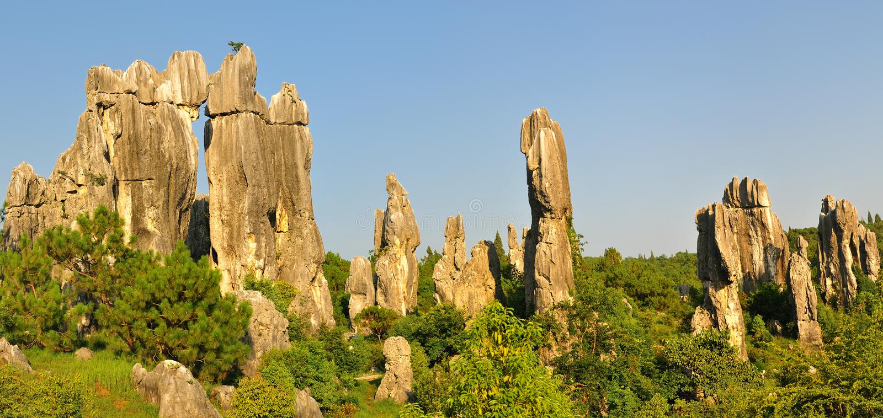Chinas Stein-Wald lizenzfreies stockbild